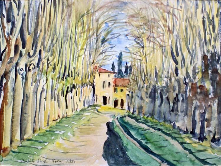 Platanenallee (Provence)